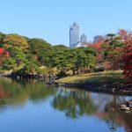 טוקיו – לא למבוגרים בלבד