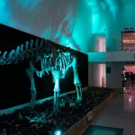 'פארק קרסו למדע' בבאר שבע מציג פעילות מדעית מדליקה