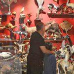 """""""דיירים"""" חדשים במוזיאון הטבע באוני' ת""""א: דב חום סורי וטיגריס סומטרי"""