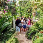 הגן הבוטני בירושלים: שבת משפחתית עם שפע פעילויות