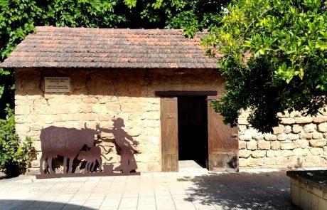 מוזיאון ראשון לציון: מסע מעורר השראה לראשית ההתיישבות בארץ