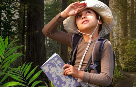 היער הקסום  – כשהאגדות מתעוררות לחיים
