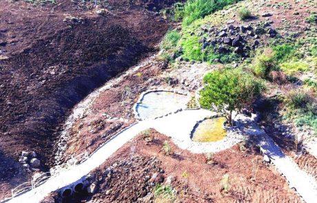 טיול חנוכה במעיינות המשוקמים שבגליל התחתון המזרחי