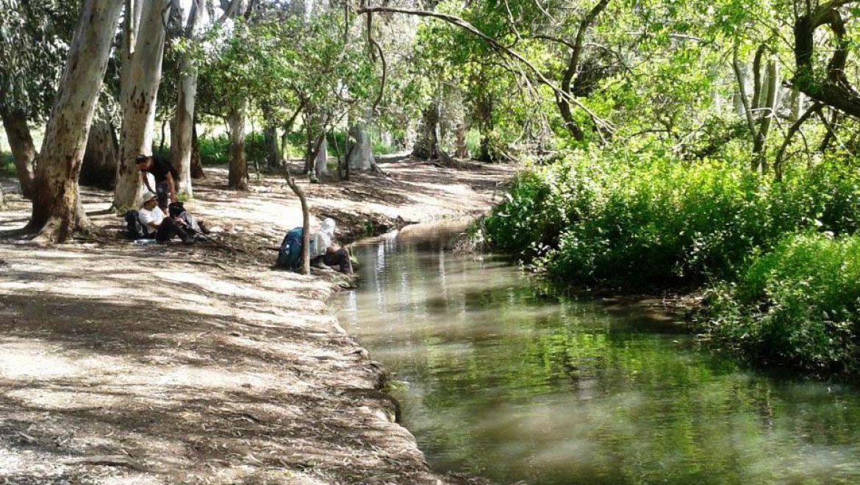 שבת של סיורים וטיולים משפחתיים בנחלים ברחבי הארץ