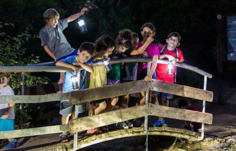 תיירות החברה הכלכלית גולן: הצעות לפעילויות משפחתיות ביום העצמאות