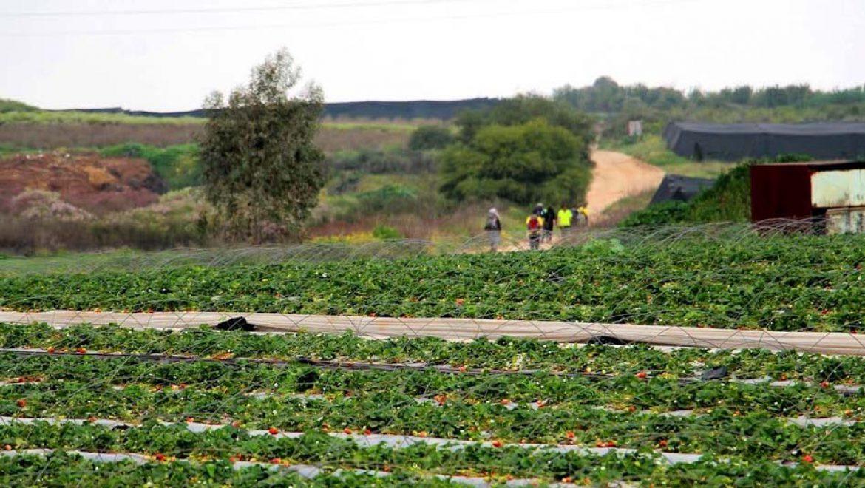 מחזקים בשרון את התיירות והטיילות בישראל